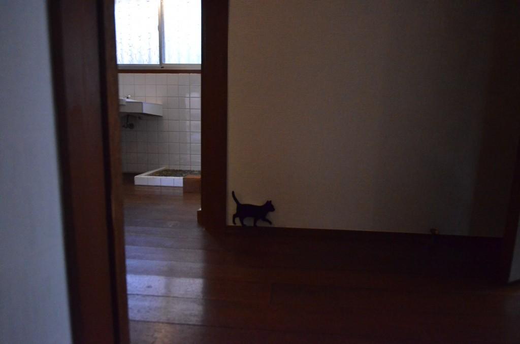 猫ライト (3)